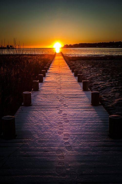 novou-cestou-ke-světlu